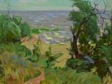 96-Южное море, Азовское-хм-45х60