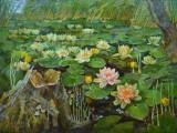 2007-Белый балет на Черном озере. Вешки-хм-59х79