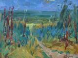 2009-На берегу моря Азовского-км-39и5х50