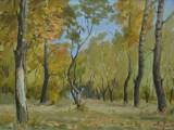 50-е-Осень в парке-км-20х28и5