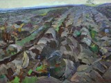 62-Весенняя пахота. Вдали г. Эльбрус-км-50х70