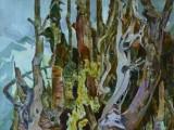 68-Лесные причуды-км-70х50
