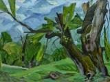 68-Старое дерево-км-49х69