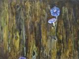 71-Голубой цветок-км-51и5х70