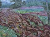 71-Колхозная весна Весна агронома Эскиз-хм-47х80